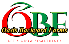 Oasis Backyard Farms-CSA and Home Garden Service